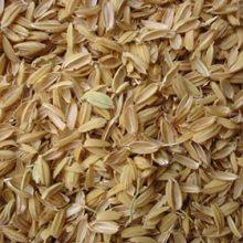 سبوس اعلای برنج کلات – ۱ کیلویی